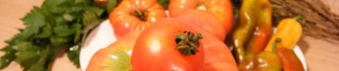 cropped-natural-tomatoes_63246-480x360.jpg